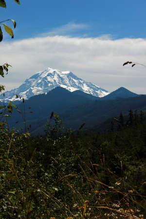 rainier: Mount Rainier with Meadow