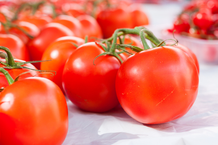 mallorca: Close-up of shiny red vine tomatoes for sale in the stall of Sineu market, Majorca, Spain