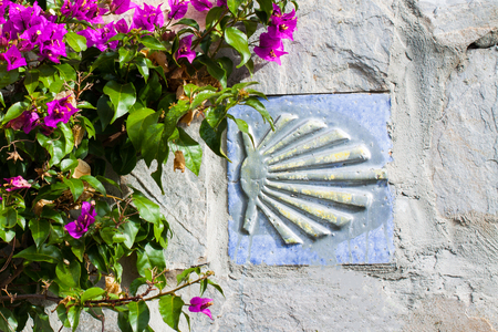 Camino de Santiago (Way of Saint James) shell sign and pink bougainvillea flowers Stock Photo