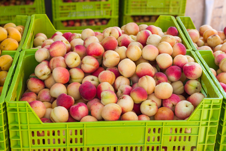 Yellow and red apricots in the box for sale on Apricot Fair in Porreres, Mallorca, Spain