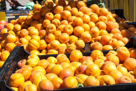 Stall with bright orange apricots for sale on Apricot Fair in Porreres, Mallorca, Spain