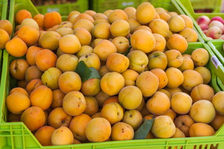 Bright orange apricots in the box for sale on Apricot Fair in Porreres, Mallorca, Spain Stock Photo