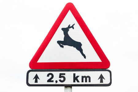 Deer crossing warning sign on a road