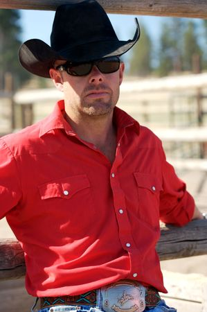 buckle: Serious Cowboy out at the paddock
