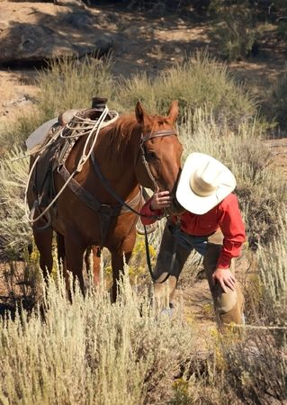 Cowboy caring for his horse