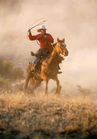 Chasing horses through the desert