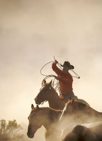 cowboy with his lasso in motion
