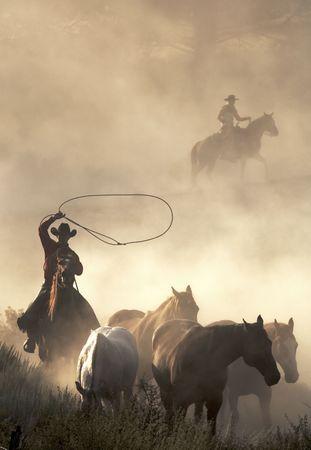 desert animals: Cowboy duramente al lavoro