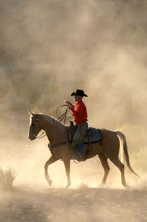 cowboy on horse: Morning Rider Stock Photo