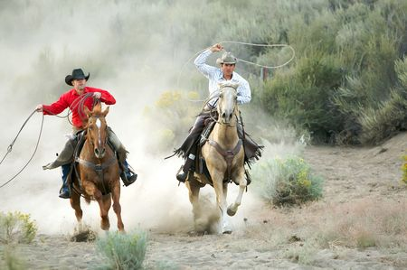 cowboy on horse: Two Cowboys galloping and roping through the desert