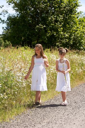 Pretty young girls standing in a field of daisies
