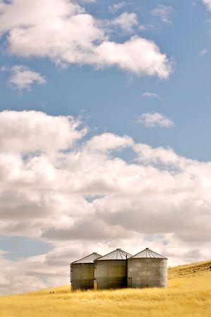 colfax: Three silos in a wheat field