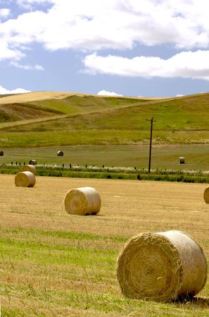 Wheat fields freshly cut with round bales of hay Stock Photo - 3392710