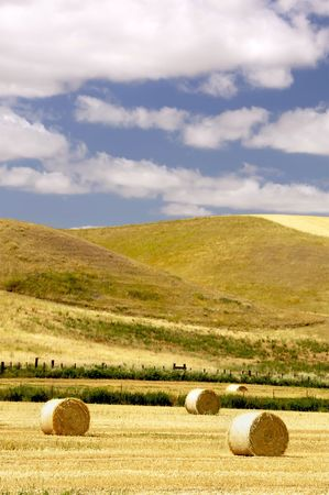 Wheat fields freshly cut with round bales of hay Stock Photo - 3392711