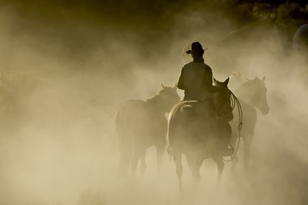 cowboy on horse: Single Cowboy with rope and horses in the dust Stock Photo