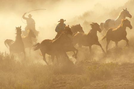 Dos vaqueros galopante y cuerda a través del desierto Foto de archivo
