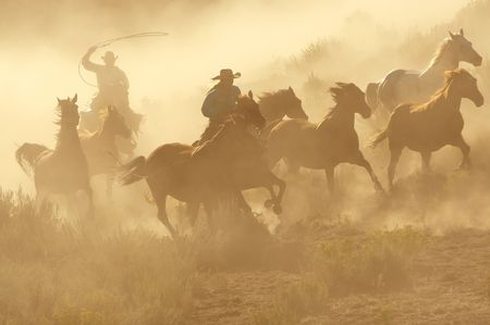 chasing tail: Two Cowboys galloping and roping through the desert