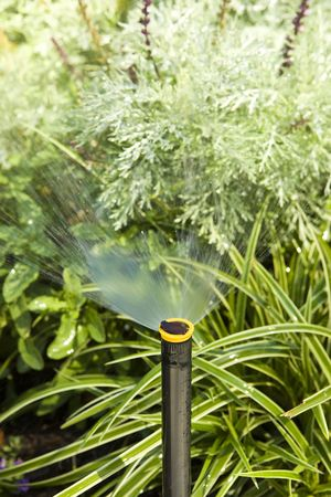 Irrigation System watering plants in a flower bed Stock Photo