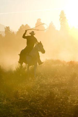 rowdy: Vaquero silueta galopante y cuerda a trav�s del desierto
