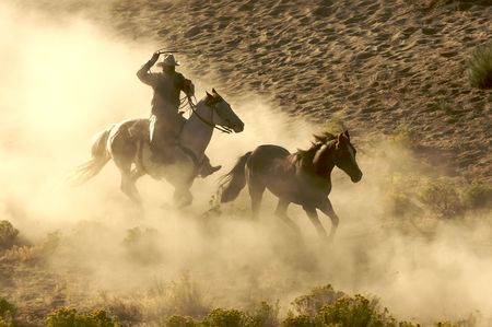 Cowboy galloping and roping wild horses through the desert Stock Photo