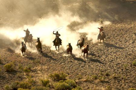 rowdy: Dos Vaqueros galopante y la cuerda a trav�s del desierto Foto de archivo