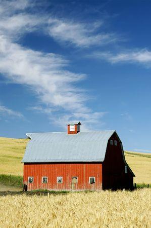 bright barn in an open field