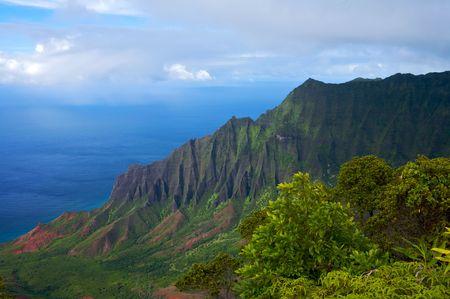 Vibrant Hawaiian Landscape