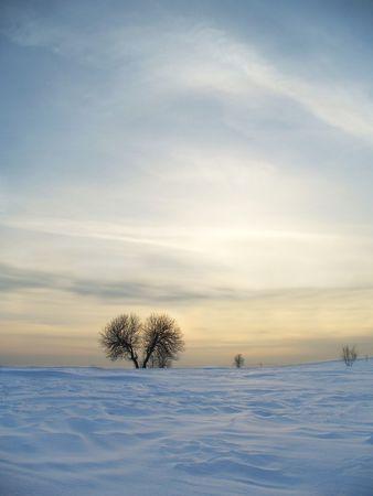 enduring: Winter landscape photographed enduring before sunset