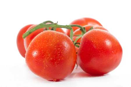 Appetizing, fresh tomatoes, red, firm, covered with drops of water, just ripped from the bush, yet have a green twig - on a white background