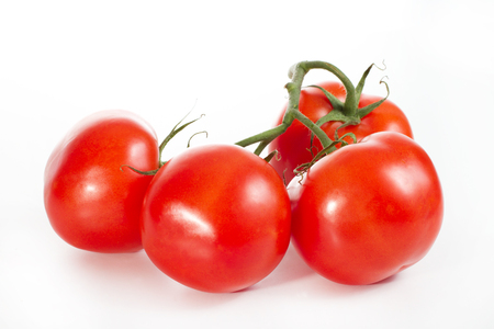 Appetizing, fresh tomatoes, red, firmly, just ripped from the bush, yet have a green twig - on a white background Stock Photo
