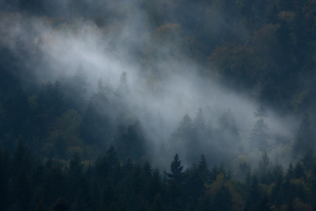 Mountain fogs are caused by a change of weather