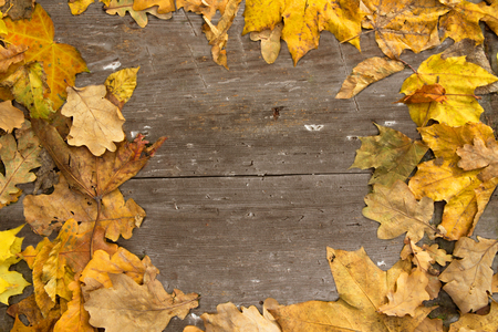 Background with old boards and superimposed autumn leaves