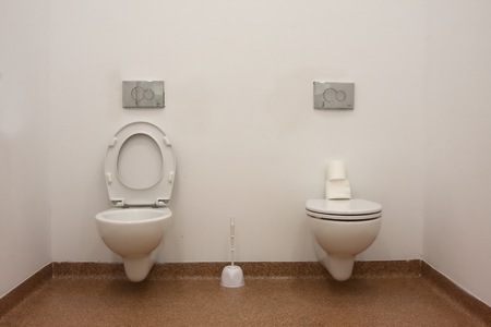 double, interesting toilet with open and closed flap