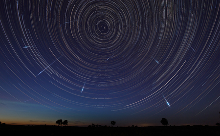 Night landscape with trees and startrails in the sky and falling stars - perseids Archivio Fotografico