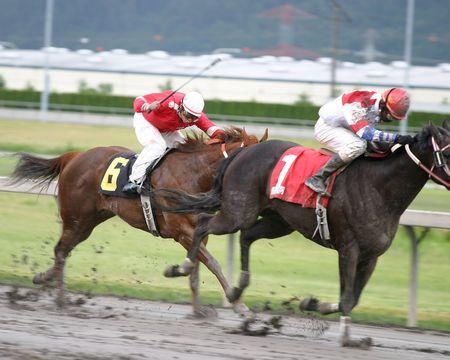 Horse racing Banco de Imagens