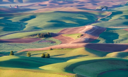 palouse: The palouse area in Washington state Stock Photo