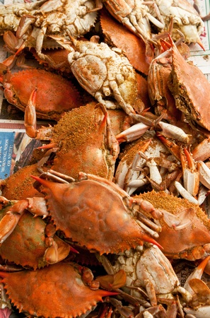 crabs: A pile of steamed and seasoned blue crabs.