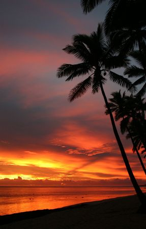 Sunset on the coral coast Fiji.  photo