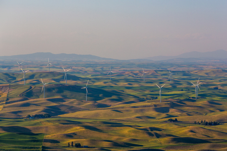 palouse: A wind farm in the Palouse region of Washington