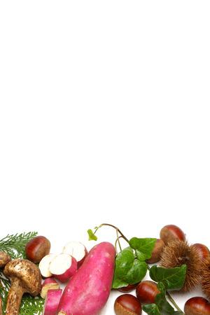 autumn foods photo
