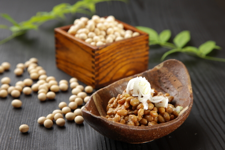 fremented soy beans  NATTO Stock Photo