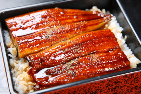 Broiled eels on rice