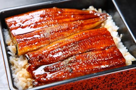 Anguilles grillés sur le riz