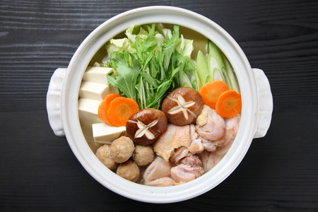 Studio shot of Japanese hot pot CHANKO-NABE