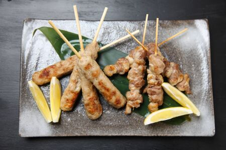 two types of yakitori skewers plate