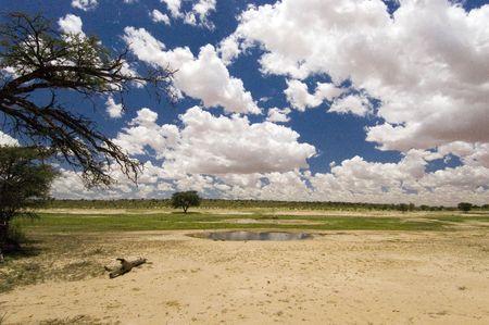 pozo de agua: NOSSOB charca en la tarde