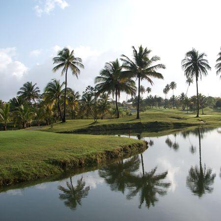Golf Resort en Dorado, Puerto Rico Foto de archivo - 3496784