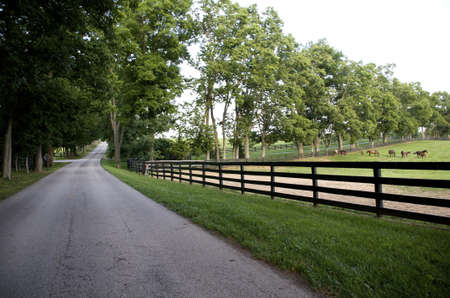 Kentucky Country Road photo