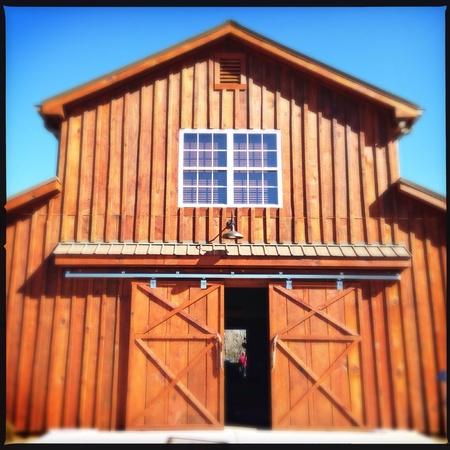 Horse farm in north Georgia, USA  Imagens