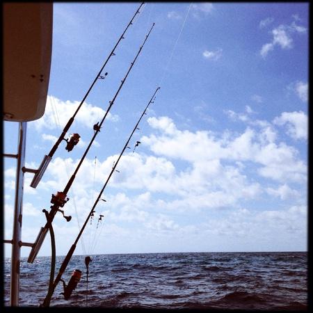 Fishing   Banco de Imagens